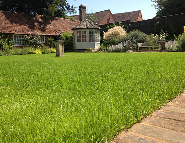 Spray Lawn - A LAWN TAILORED TO YOUR SOIL