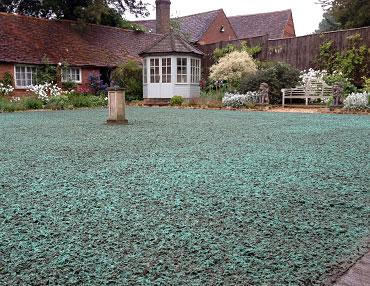 Spray Lawn - Courtyard Country Garden