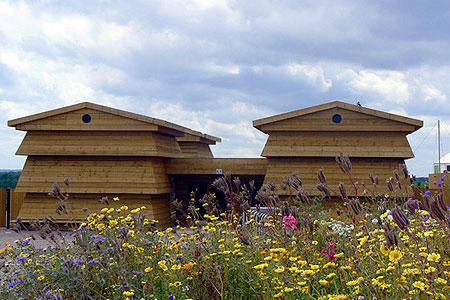 Timber Frame Giant Beehives